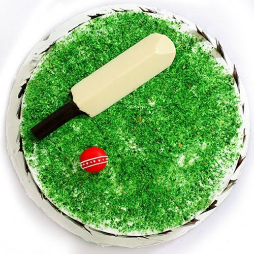 Cricket Stadium Cake
